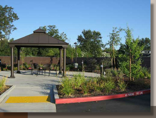 Planting Design for an Assisted Living Facility