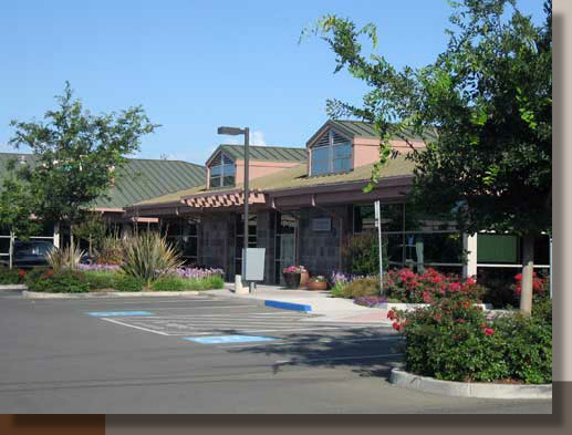 Landscaping for a Davis, California Office