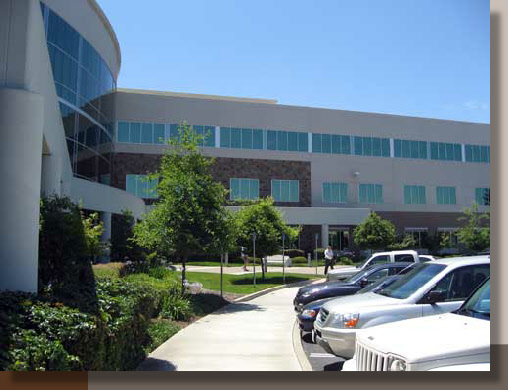 Corporate Office Landscaping in Folsom California