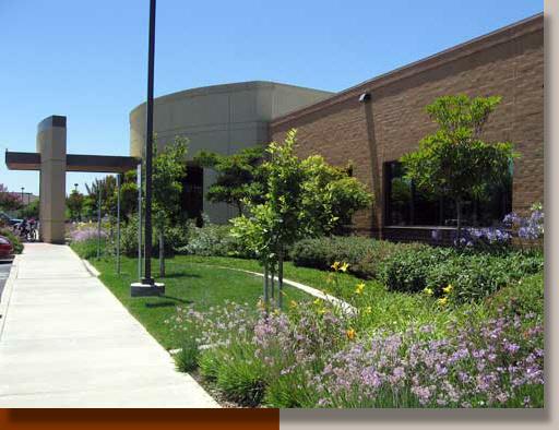 Office landscaping Home Medical Center Planting Design In Elk Grove Garth Ruffner Landscape Architect Uc Davis Medical Center Office Elk Grove Ca Gr Landscape Architect