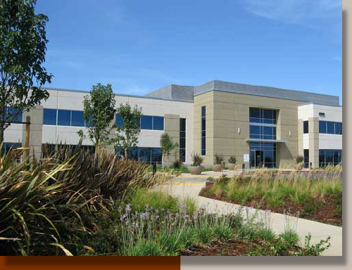 Landscaping a Rancho Cordova Corporate Office