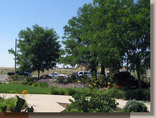 Sterling Point Center Lincoln Ca G R Landscape Architect