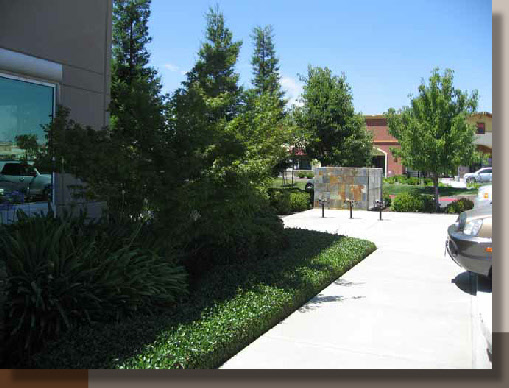 Folsom Corporate Center Landscaping