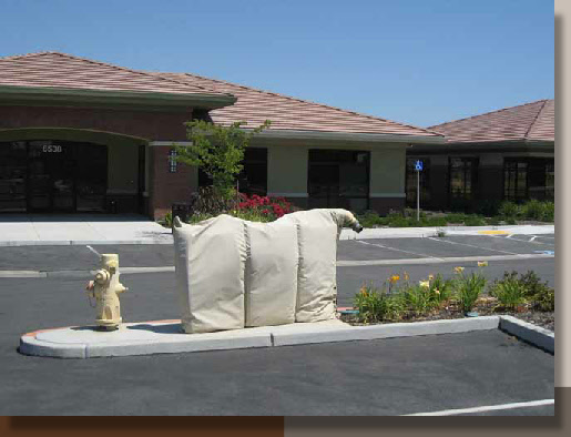 Fire Equipment and Landscaping at Rocklin 65 Offices
