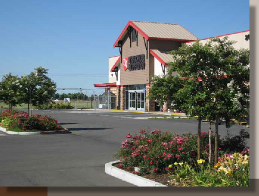 Parking Lot Planting Design in Solano County