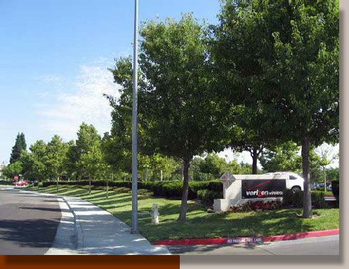 Street Frontage Landscaping in Rancho Cordova