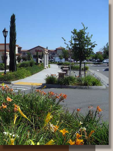 Sterling Point Center Landscape Architecture, Lincoln, California