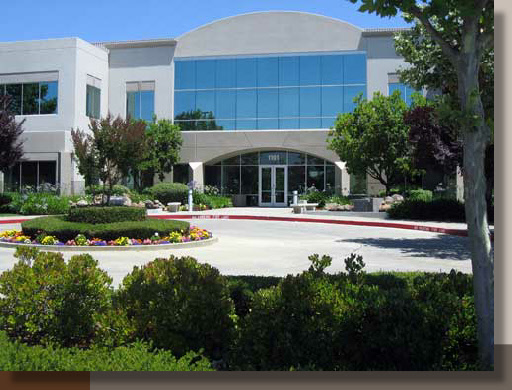 Office Landscape Architecture in Roseville